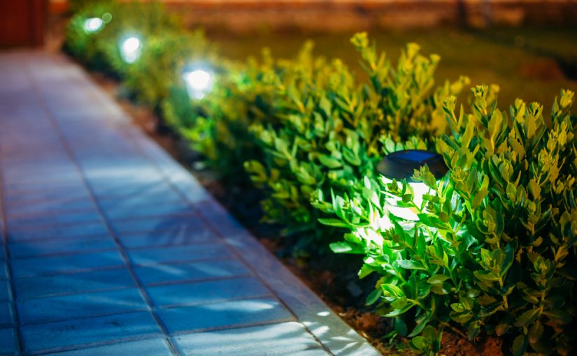 How to Light up Your Lawn with Lights